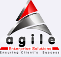 Agile Enterprise Solutions, Inc